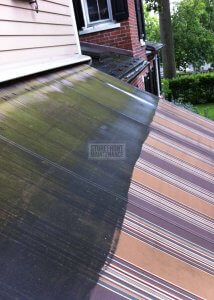 Cleaning mold from Canopy and awnings